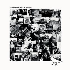 Bilde av Turdus Musicus - vinyl